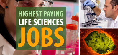 The Highest Paying Life Sciences Jobs