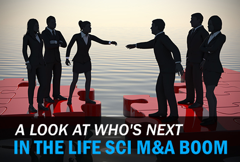 A Look at Who's Next In the Life Sci M&A Boom