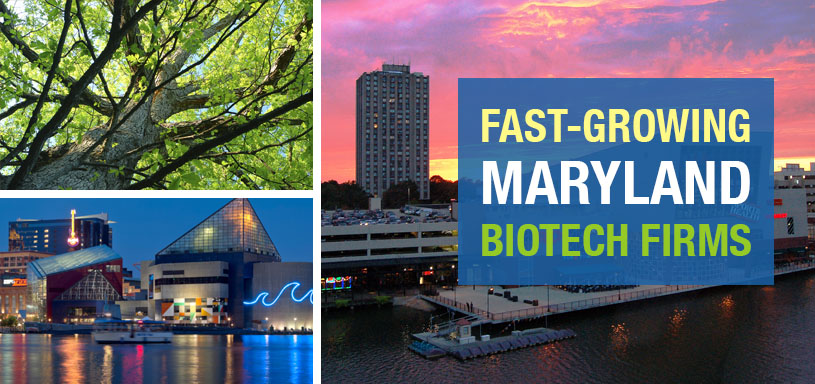 Fast-Growing Maryland Biotech Firms'