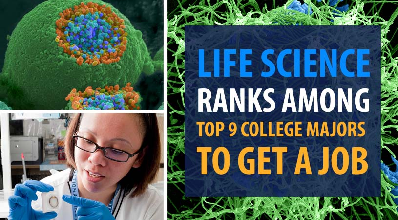 Life Science Ranks Among Top College Majors to Get a Job