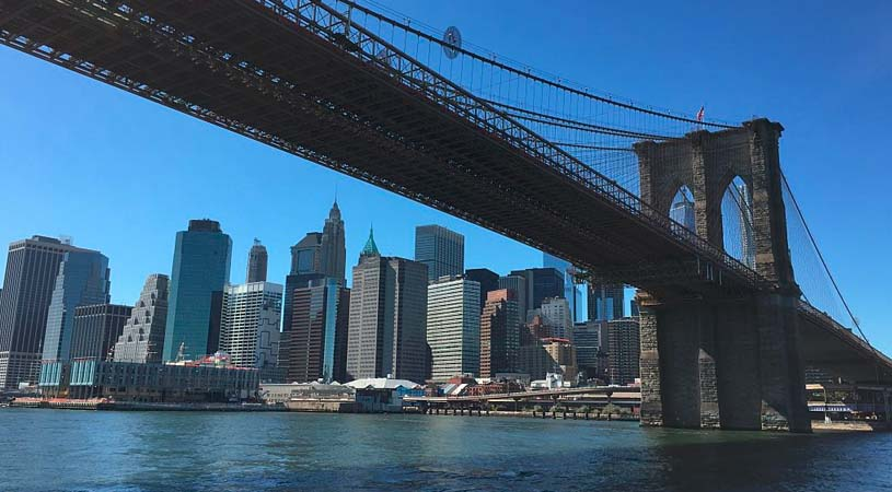 Takeda, VCs and NYC Institutions Form Bridge Medicines to Grow Biotech in the Big Apple