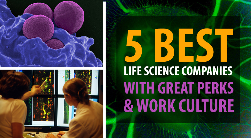 The Five Best Life Science Companies with Great Perks and Work Culture