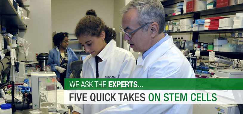Five Quick Takes on Stem Cells
